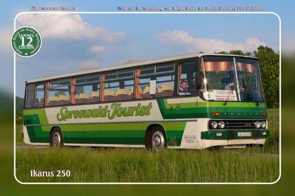 """Blechschild Bus Nr.12 """"Ikarus 250"""""""
