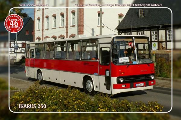 """Blechschild Bus Nr. 46 """"Ikarus 250"""""""