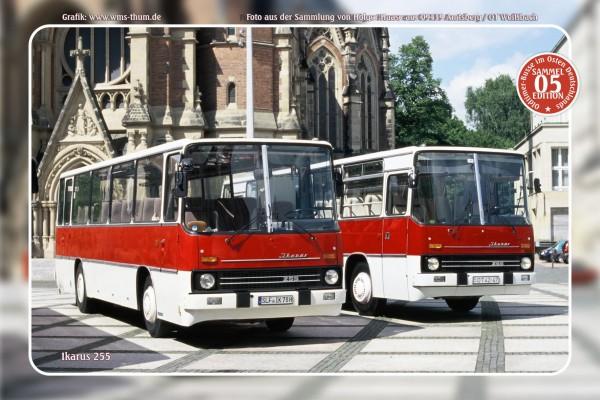 """Blechschild Bus Nr.5 """"Ikarus 255"""""""