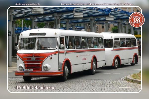 """Blechschild Bus Nr.8 """"IFA H 6 B Hängerzug"""""""